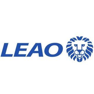 Грузовые шины Leao