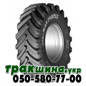 600/70R30 161A8/158D BKT AGRIMAX FORTIS TL