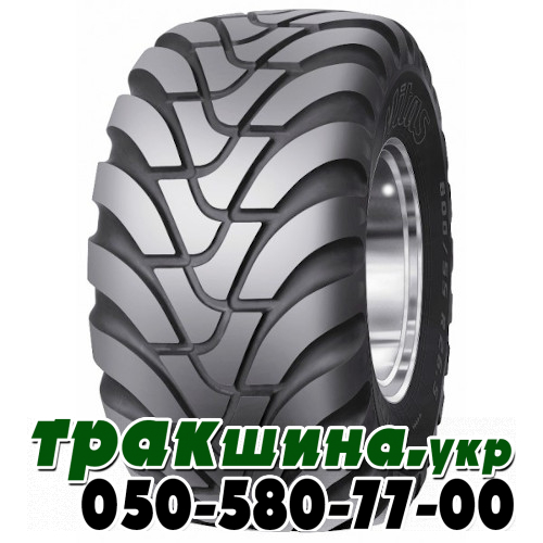 650/55R26.5 Agriterra02 169D TL Mitas